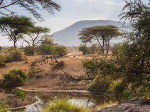 Cratere de N'gorongoro