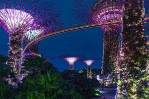 Découvrir Singapour
