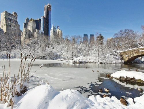 Pourquoi visiter New York l'hiver ?