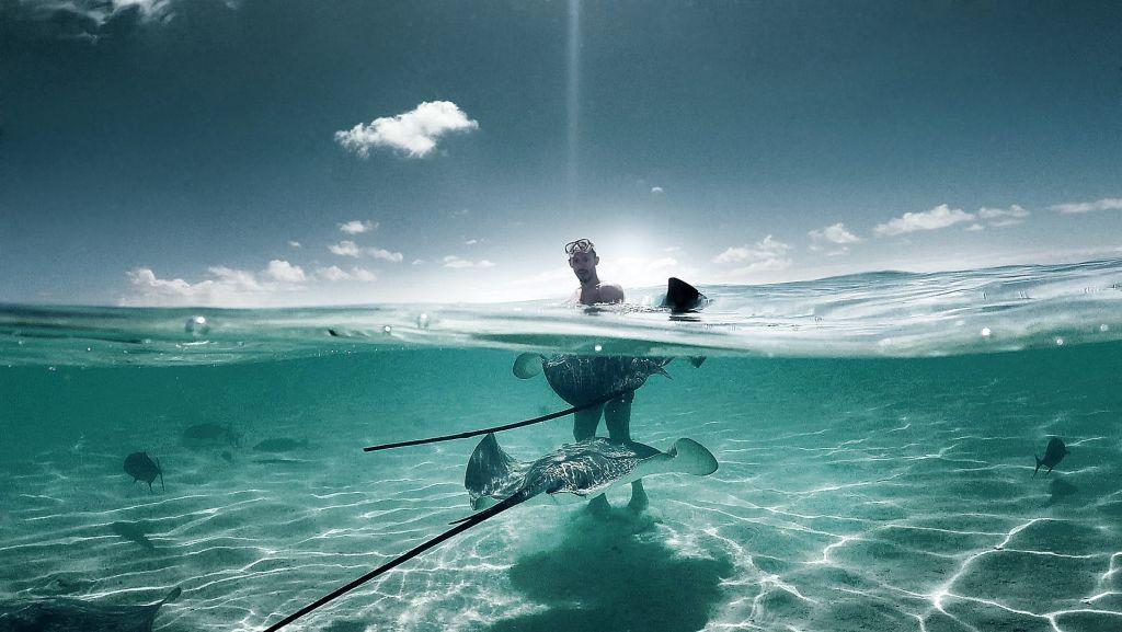 Nager avec les raies en Polynésie